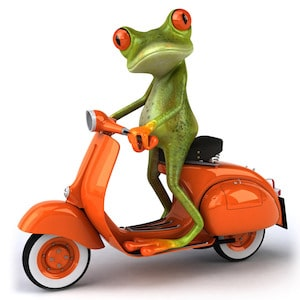 Tango on a Moped Graphic